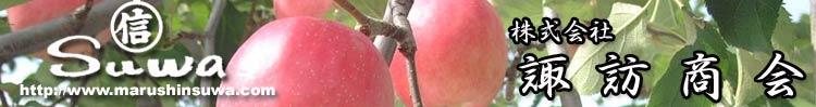 りんごリンゴ林檎の諏訪商会