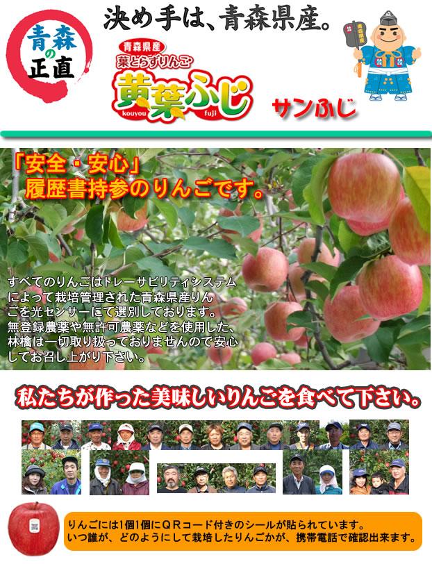 青森県産葉とらずりんご黄葉ふじ履歴書持参の正直りんご